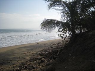 Aguada house photo - The beach is just steps away - Really!