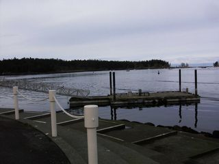Nanaimo apartment photo - Closer view of crab dock. Protection island close by.