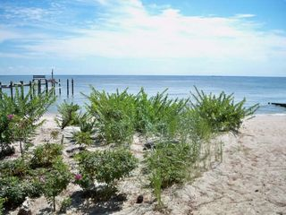 Point Lookout house photo - beach front