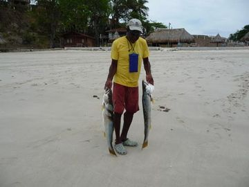 Contadora Panama - typical size of fish caught daily