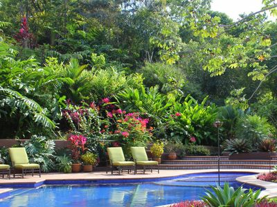 Exuberant plantings provide an exotic backdrop for the crystal clear pool