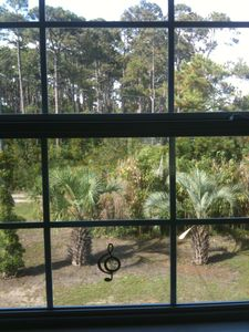Mexico Beach house rental - View from Kitchen window