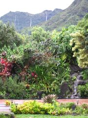 Kapaa house photo - Pool & Mountain Waterfall Views