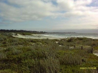 Asilomar State Beach and Center - Our house is a half-mile to the gates