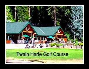 Twain Harte cabin photo - Walk to town in just 4 blocks, Golf course is a 5 block walk
