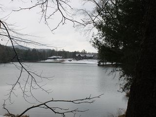 Big Canoe house photo - View of Clubhouse Across Lake Sconti