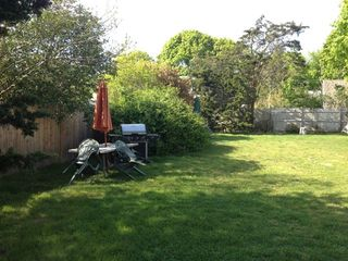 Falmouth cottage photo - Even on the hottest day you can find shade under our old cedar trees.