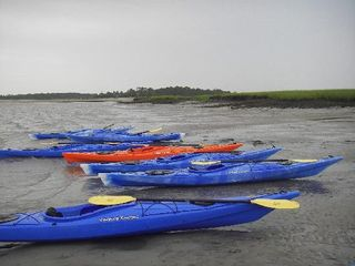 Tybee Island villa photo - Tybee Island kayaking