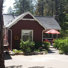 Idyllwild cabin rental - Cutest Cabin in Idy!