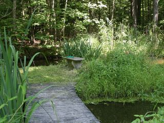 Saugerties house photo - pond