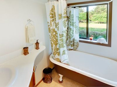 Clawfoot tub/shower with View to Pasture.