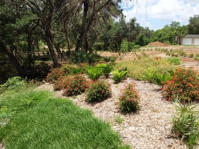 Onsite park along Mullet Creek