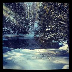 Crivitz cottage photo - Winter at Veteran's Falls, just a few minutes drive away.