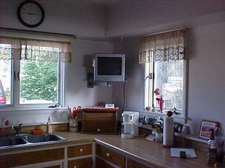 Muskegon cottage photo - Kitchen Overlooking Rose of Sharon Tree