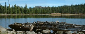 Gumboot Lake- One many mountain lakes near McCloud