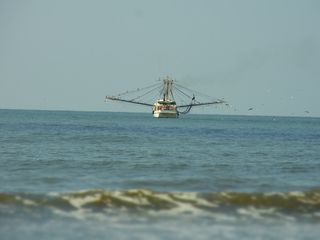 Kiawah Island villa photo - Shrimp boat off the beach