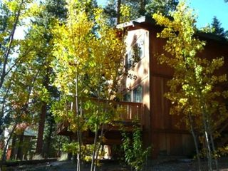 Kings Beach house photo - Autumn aspens