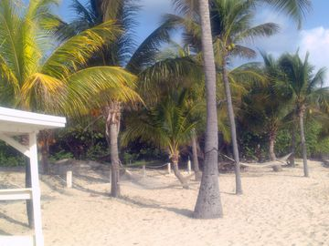 .Our white sand beach has chase loungers and hammocks to our guests.