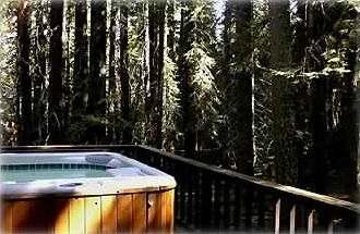The Bear's Tub:  Mid Level Back Deck:  Privacy in the Woods