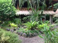 Jungle living at it's finest! Sleeps 2-9 persons in Caribe's most desired area.