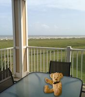 What a spectacular view...Galveston at its best!