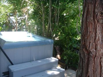 Private Hot Tub in fenced and secluded patio with gas BBQ