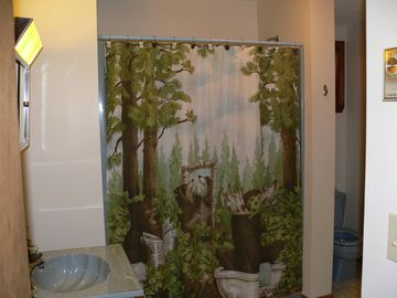 Full Bath on 1st Floor with Full Size Washer and Dryer! Gotta love the curtain!