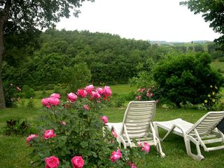 Chiusi villa photo - Outside, garden view in spring. Many roses around.