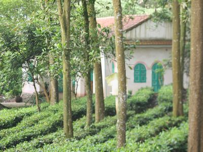 Entire Tea Hill House in Hanoi Countryside : Private home with resort facilities