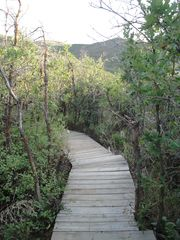 Heber City cabin photo - Outside Walking Path