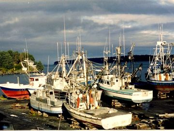 Kodiak house rental - A view from the house, fishing vessels in the boatyard during sunet