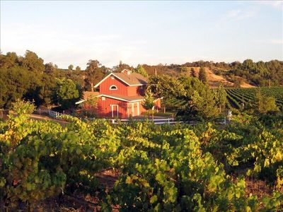 Wine Country Farmhouse for 6 -  nestled in vineyards and rolling hills. Perfect!