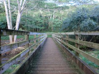 Wailua house photo - Bridge to Hiking Trails just steps from the Home