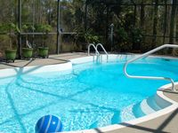 Tropical, Lush, Private With Large Screened-in Pool. Come Bungle In Our Jungle!