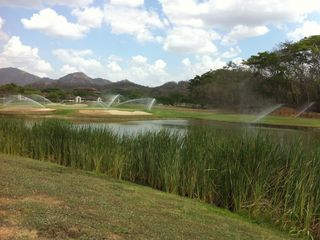 Playa Conchal condo photo - The Golf Course