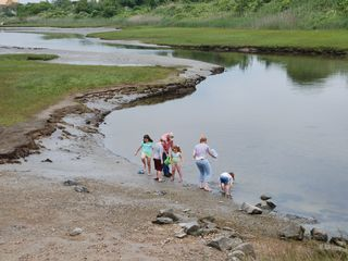 Scarborough Beach house photo - The kids love looking for crabs and marine life at nearby tidal flats.