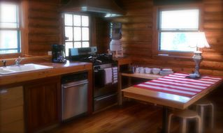 Catskill cabin photo - The country kitchen