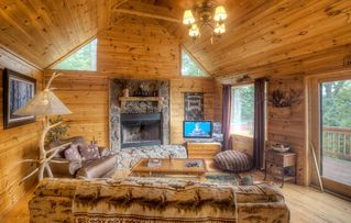Ellijay cabin photo - Wood burning fireplace in living area