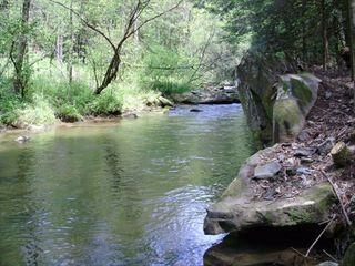 Ellijay cabin photo - Your Private Swimming Hole! You'll Swim, Float, and Enjoy Mother Nature's Best!