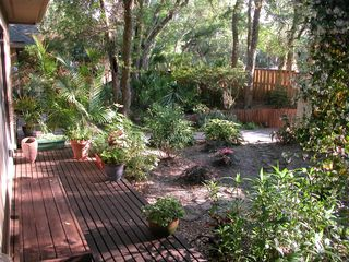 Amelia Island house photo - Front yard garden and view from the 2nd and 3rd bedrooms.