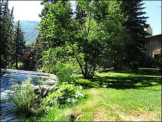 Vail townhome photo - Back Deck Overlooks Gore Creek in Backyard