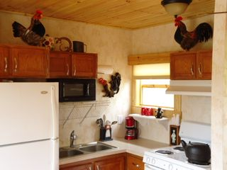 Bryson City cabin photo - yikes those are real chickens up there lol.