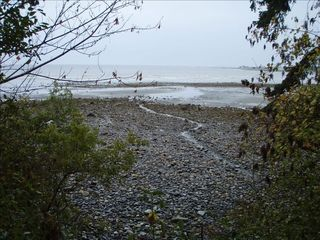 Parksville house photo - A few rocky spots till the soft, warm sand at low tide