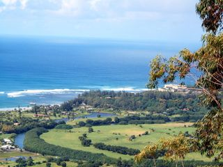 Princeville house photo - Okolehao Hiking Trail 5 minutes Away