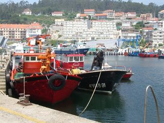 Poio cottage photo - Fishing port