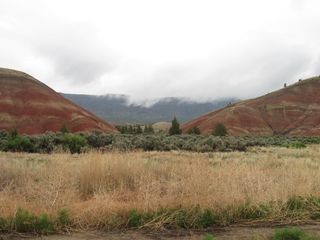 Mitchell cottage photo - Painted Hills in Fog