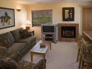 Moab condo photo - Living Room. 36
