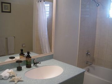 One of the bathrooms in Sea Front Apartment