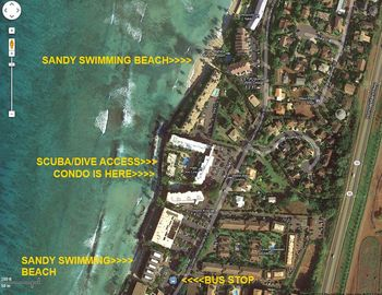 Here are the closest sandy swimming beaches & bus stop-all a 5 min walk or less