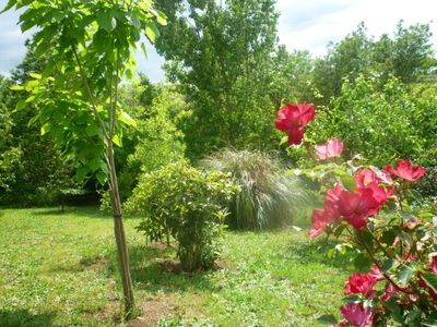 Frascati cottage rental - Down by the stream in spring
